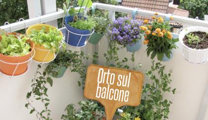 Fai da te l 39 orto sul balcone di casa for Orto sul terrazzo fai da te